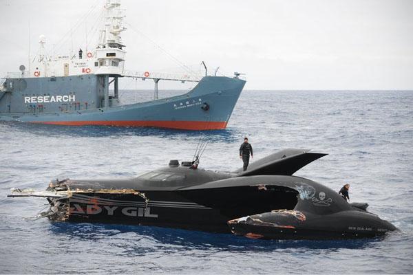 日本渔船撞沉先进反捕鲸快艇