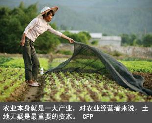 对农业经营者来说,土地无疑是最重要的资本