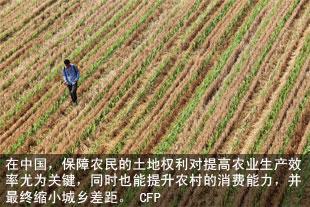 在中国,保障农民的土地权利对提高农业生产效率尤为关键
