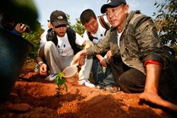 李连杰亲自栽种咖啡苗