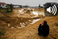 重金属污染稻米调查