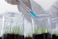 如何应对转基因食品恐慌?