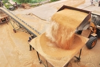 报告提示粮食安全风险:国际粮食贸易路线可能阻塞