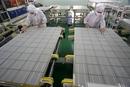 欧盟委员会对中国光伏产品发起立案调查