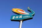 碧桂园上半年销售收入584亿 投资放缓