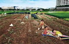 未来十年,土地饥渴将是深圳日益严重的顽疾。