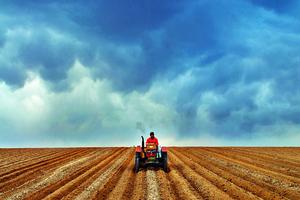 周鸿升:鼓励退耕还林土地经营权流转