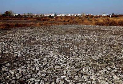 2012年11月13日,安徽省肥东县白龙镇长王村,大牧场外龟裂的粪池.