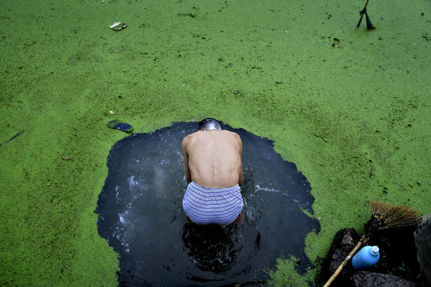 An elderly man uses a broom to sweep away a burst of algal bloom from the surface of a pond in order to bathe on June 23, 2010 in Jiaxing, Zhejiang Province. Zhang Zhiping/CFP