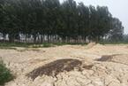 北排污泥倾卸持续 环境危害堪忧