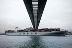 中国远洋巨亏72亿 创上市来最大半年亏损