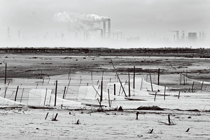 null   有一群住在台湾母亲之河出海口的人,百年来过着耕种、捕鱼的平淡生活。他们的祖先曾经说,这里有田可种做,有海可渔获,绝对不愁没东西吃。  然而,自从十几年前他们村子南边盖了号称世界第一的石化工厂后,一切都变了。他们的西瓜只开花却不结果。他们的农作产量逐年下滑。他们的海里渐渐捕不到鱼。他们熟悉的河口不再有野鸟下蛋,甜美的文蛤也变得酸苦。甚至,就连他们的身体也变得像土地、海洋一样,逐渐失去了生命力。这里是台湾彰化县大城乡台西村,由于紧邻台塑六轻化工厂的398只烟囱,这里成为全彰化县罹癌率最高
