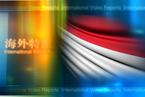 阵痛推动印尼改革
