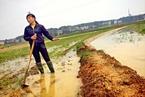 盘前必读:土壤污染防治行动计划印发