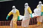 凶猛埃博拉
