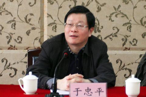 四川省眉山市人大常委会副主任于忠平接受调查