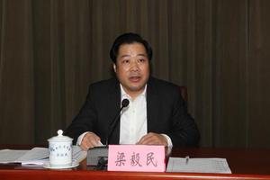 茂名市委书记、市人大常委会主任梁毅民被调查