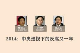 2014:中央巡视下的反腐又一年