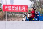 四部门敦促秸秆禁烧 加快发展综合利用产业