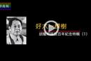 凤凰卫视纪录片《好大一棵树》(一)