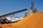 陈章良:中国农业竞争力为什么突然降低了