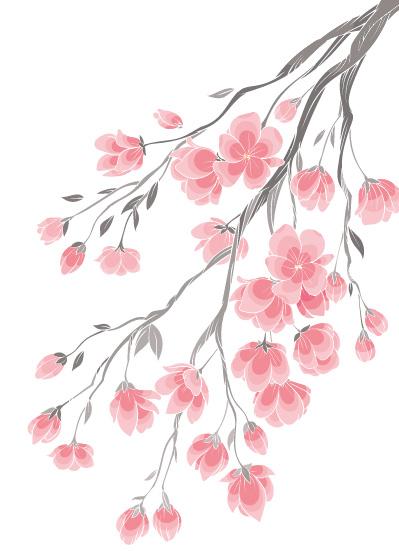樱花树下 物语
