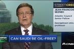沙特经济真能摆脱石油依赖吗