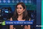 讨论:投资中国股市的风险与回报