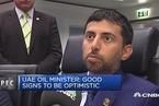 阿联酋石油部长:石油市场正在恢复供给平衡