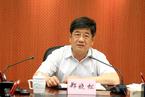 回归外事系统 郑晓松任中联部副部长