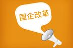 """李扬:国企改革要落实""""管资产"""""""