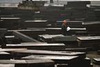 宝武合并方案公布 武钢或出售防城港项目
