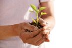 临终关怀:追求生命自主意味着什么?