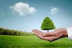 专家:中国环保立法框架需改革