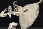 古典芭蕾不死