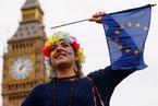 英国脱欧生变 英高院裁决应当议会说了算