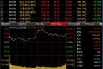 今日收盘:小盘股活跃 沪指震荡回升涨0.46%