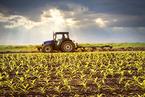 发改委再推两类企业专项债 覆盖农业、养老等领域