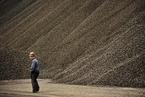 2017年全球煤炭市场供应或偏紧