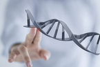 基因测序公司贝瑞和康借壳何以连拉八个涨停?