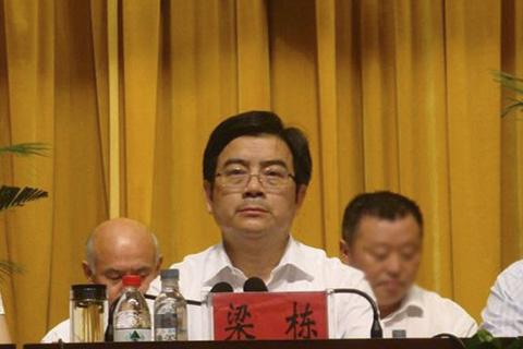 安徽省阜阳市原副市长梁栋严重违纪被开除党籍