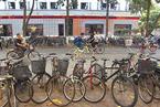 """广州深圳代表委员呼吁城市道路""""优待""""单车"""