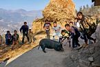 显影 | 凉山村庄的彝族年