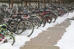 深圳:自行车进入机动车道罚款50元