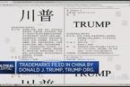 特朗普在华注册商标初步获批引争议