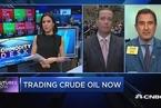 壳牌CEO:石油行业很难做短期预测