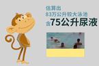 这项研究告诉你,泳池到底含尿多少