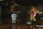 日本再开一间全机器人服务酒店