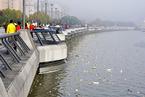 中央环保督察组:上海垃圾处理和水环境管理问题突出