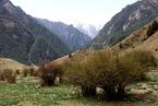 中央环保督察组:甘肃省生态环境恶化趋势尚未得到根本遏制